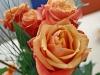 rose-5-1024x768.jpg
